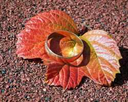 Как увести из семьи женатого мужчину