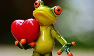 Как ведет себя влюбленный мужчина: жесты, мимика, позы и другие невербальные проявления