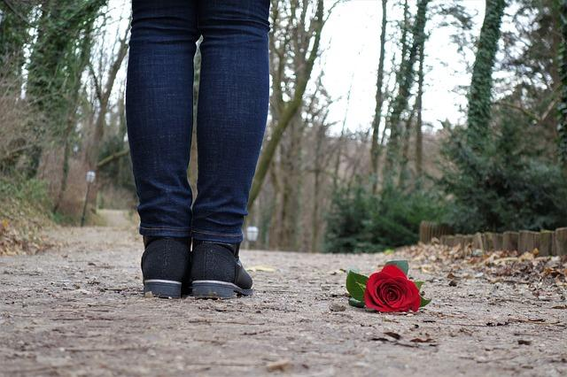 Бросил розу