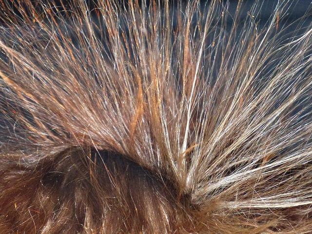 Волосы дыбом