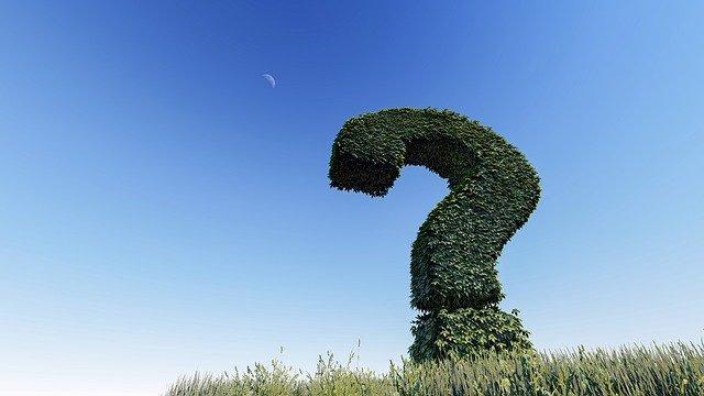 Знак вопроса из зелени