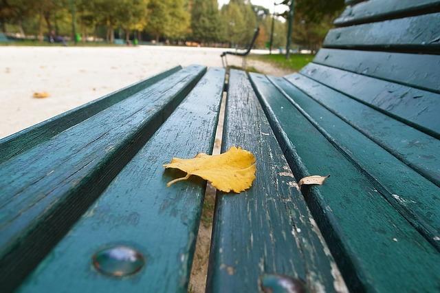 Осенний лист на скамейке