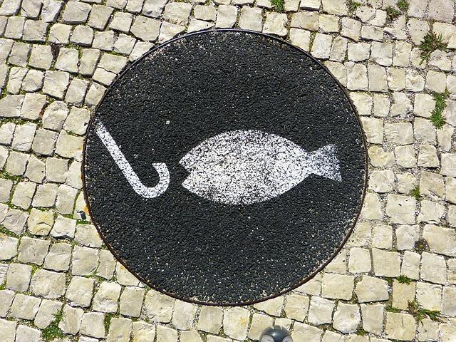 Рыба плывет за крючком