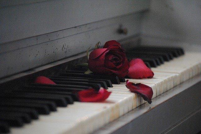 Завявшая роза на пианино