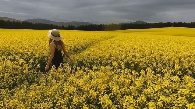 Девушка в поле цветов